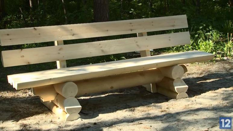 20 новых скамеек установили на тропе здоровья в Зашекснинском районе Череповца
