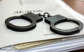 Санкции статьи предполагают 10 лет лишения свободы