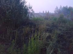 Фото ГУ МЧС Вологодской области