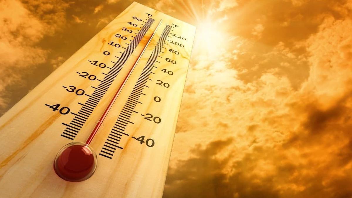 Температурные рекорды на Вологодчине обновляются практически каждый день