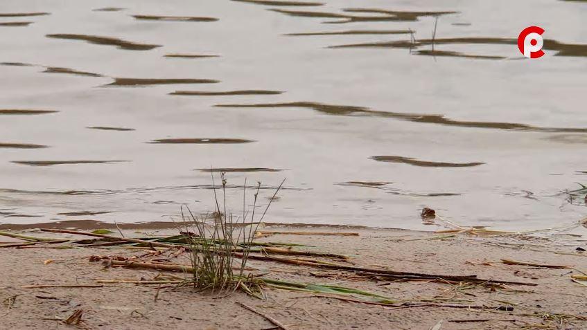 Из реки Колпь в Бабаево извлечено тело 49-летнего мужчины