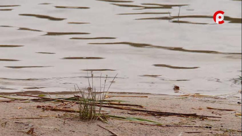 Мужчина утонул в реке Колпь в Бабаево