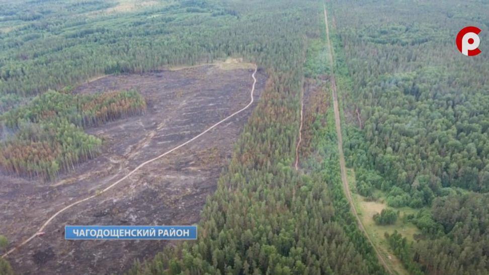 Крупный природный пожар в Чагодощенском районе не могут потушить несколько суток