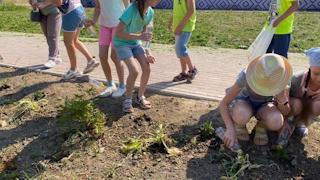 Школьники поливают растения в жару