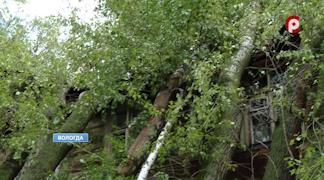Последствия разгулявшейся стихии до сих пор не устранили на Гончарной, 32