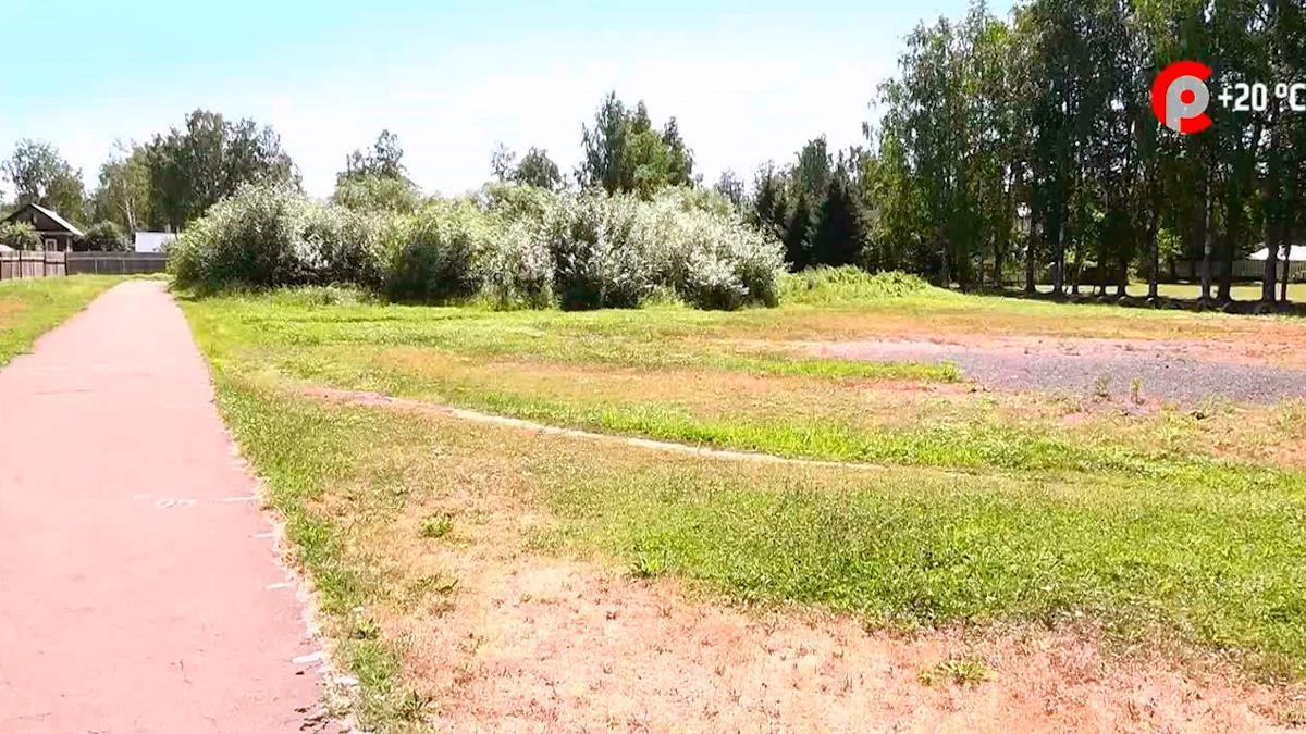 Превратить болото в современный спортивный объект