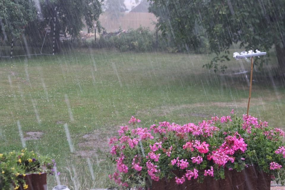 Дождь прольется только ко вторнику