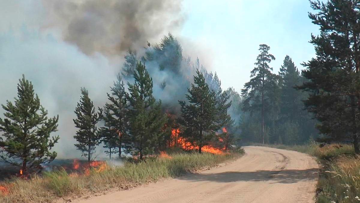 4-ый класс пожароопасности установили в 6 районах области