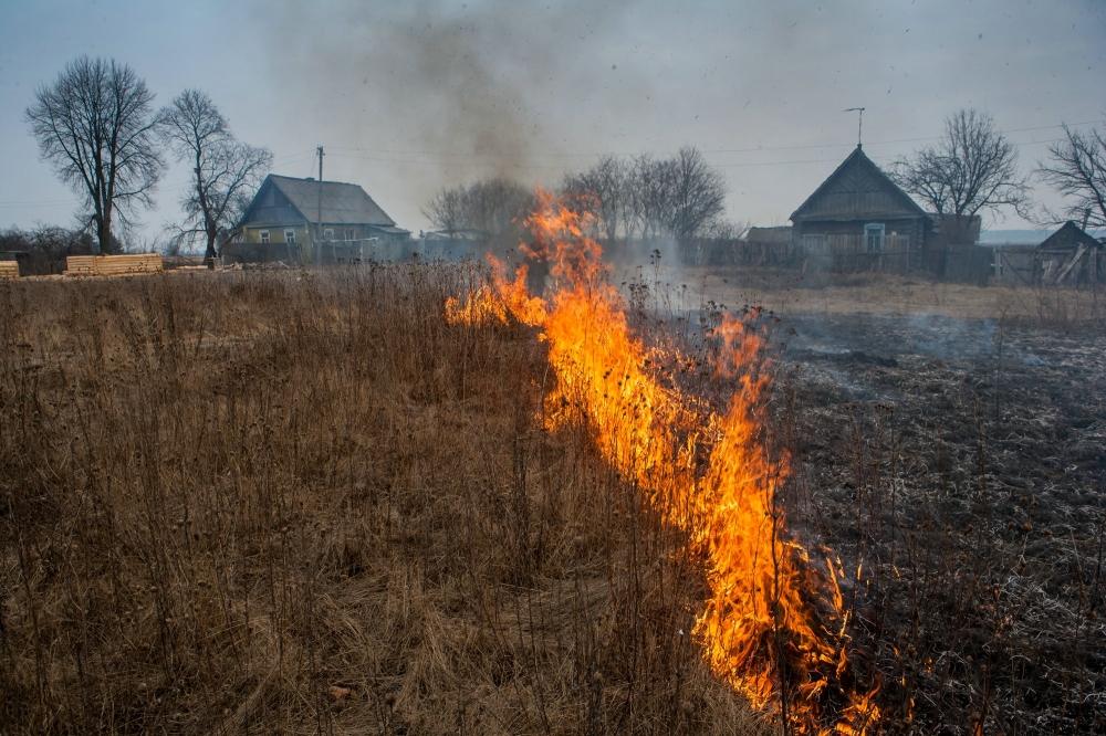 Причиной пожара названо неосторожное обращение с огнем неустановленных лиц. В ликвидации очага задействовали 3 единицы техники и 9 человек личного