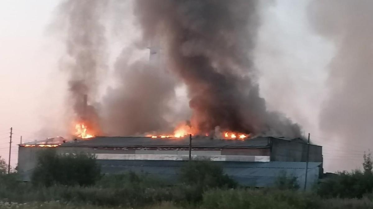 Пилорама сгорела в Соколе