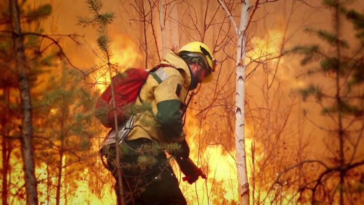 На Вологодчине мобилизованы все ресурсы на борьбу с лесными пожарами