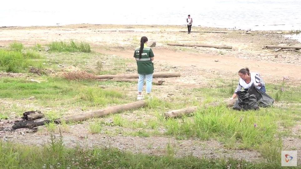 Волонтеры «Свезы» очистили от мусора прибрежную зону в Новаторе