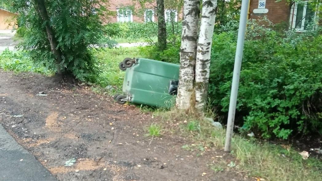 Хулиганы испортили мусорные контейнеры в Великом Устюге