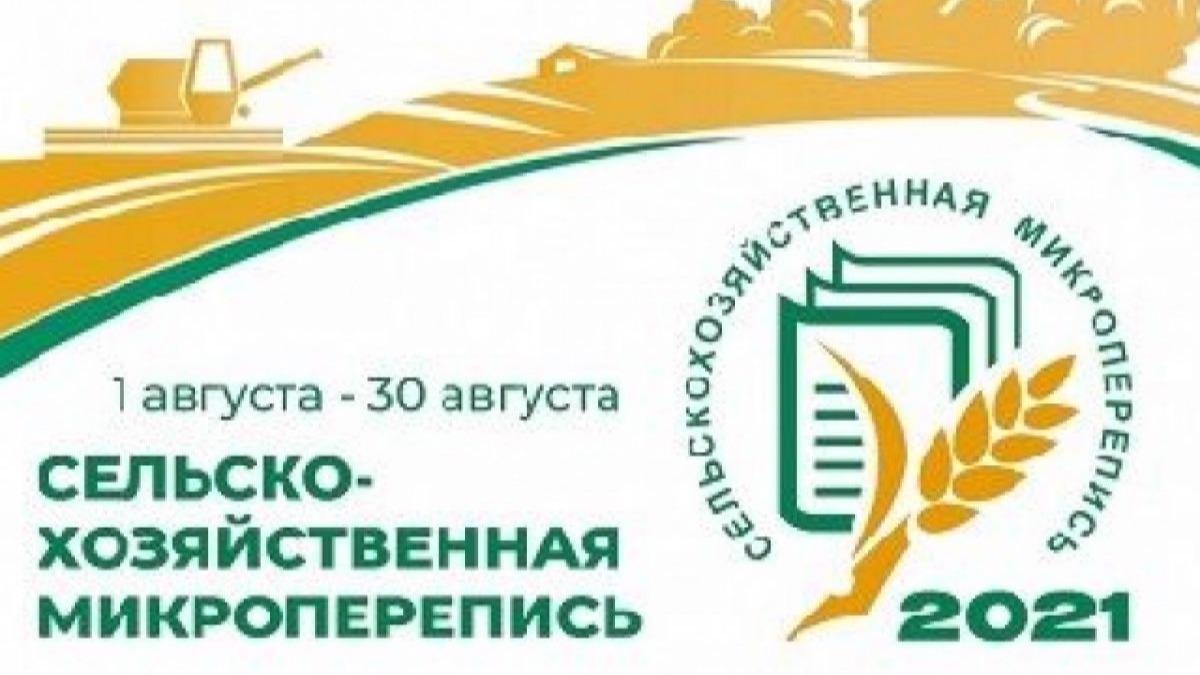 Почти 7,5 тысяч владельцев и арендаторов земельных участков опросили на Вологодчине в рамках сельскохозяйственной микропереписи
