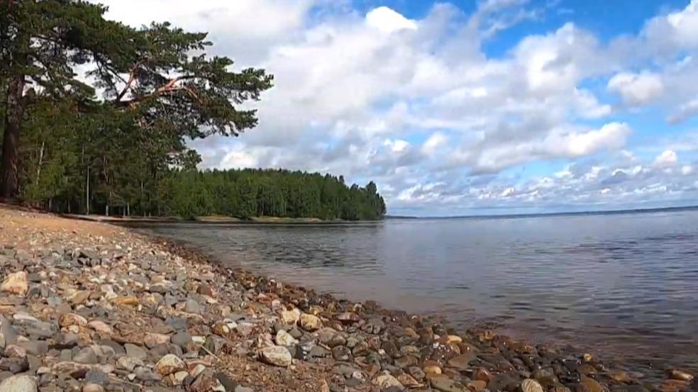 Восьмилетняя девочка едва не получила переохлаждение при купании в Онежском озере