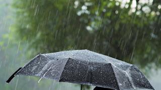 Дождливая погода сохранится на Вологодчине до выходных