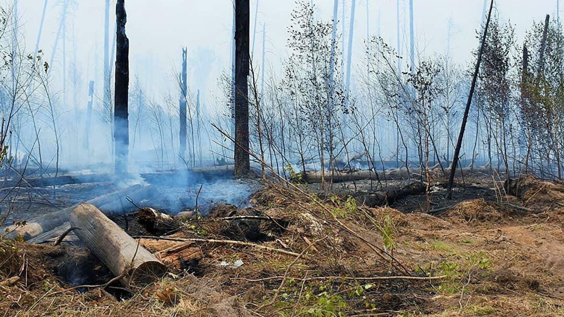 Пожар в Верховажском районе - один из самых крупных за последние годы