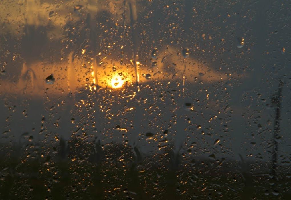 Дождливая погода долго не покинет территорию области