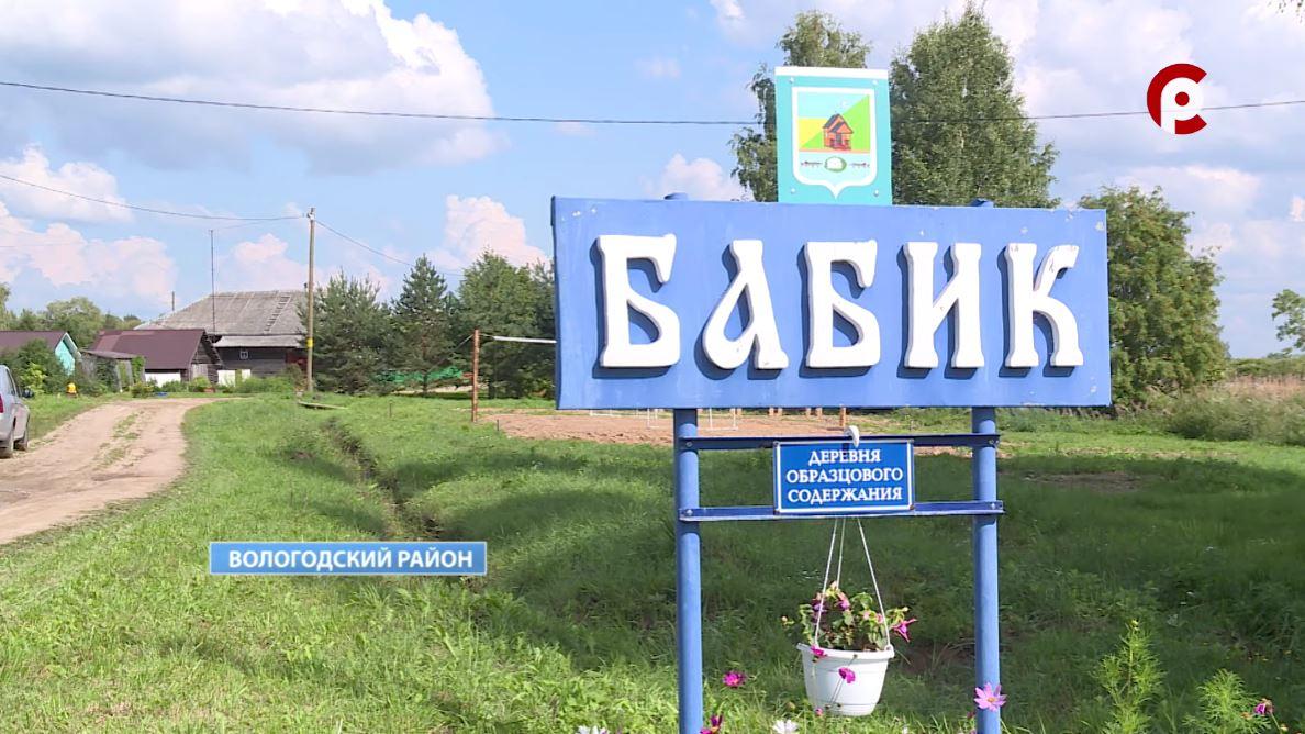 Деревня Бабик Кубенского поселения признана самой красивой деревней Вологодского района