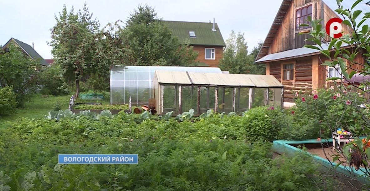 Сельскохозяйственная микроперепись стартовала 1 августа