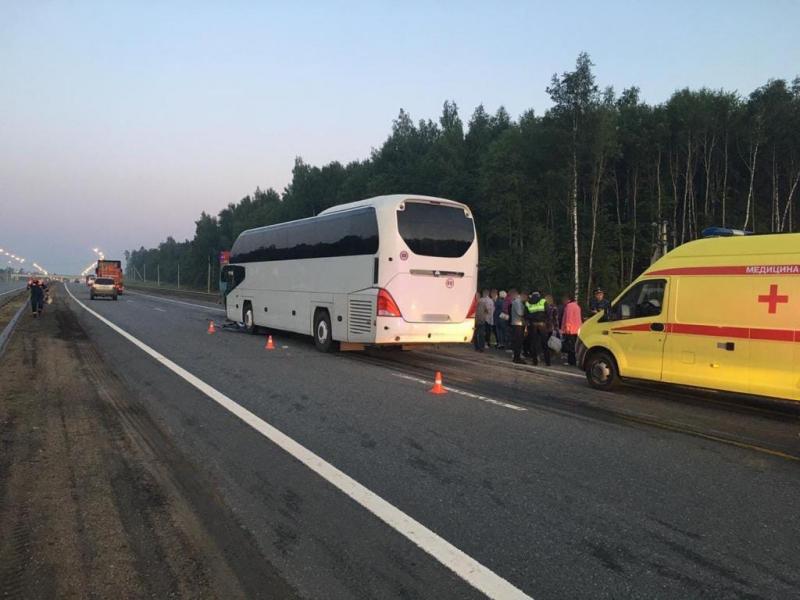 Фото: УМВД России по Владимирской области