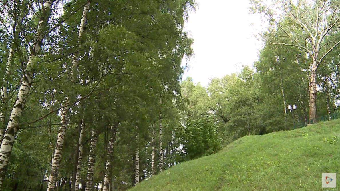 Эксклюзивную экскурсию по Соборной горке в Череповце провели в честь Дня археолога