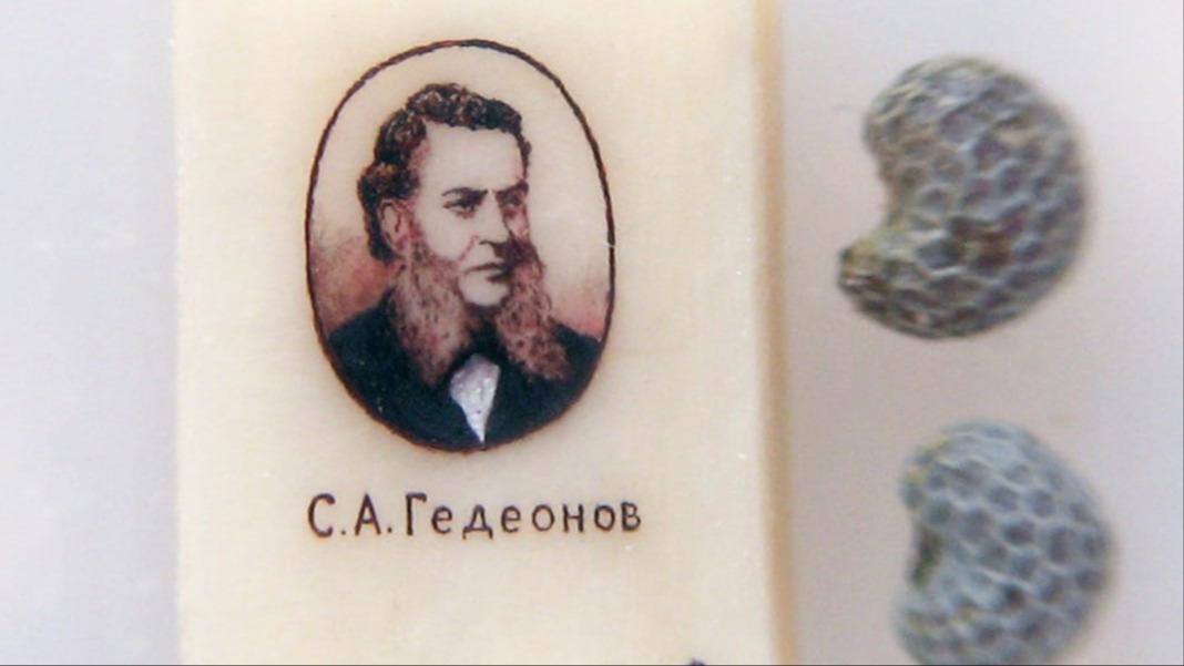 Картины Дворянова  поражают петербуржцев