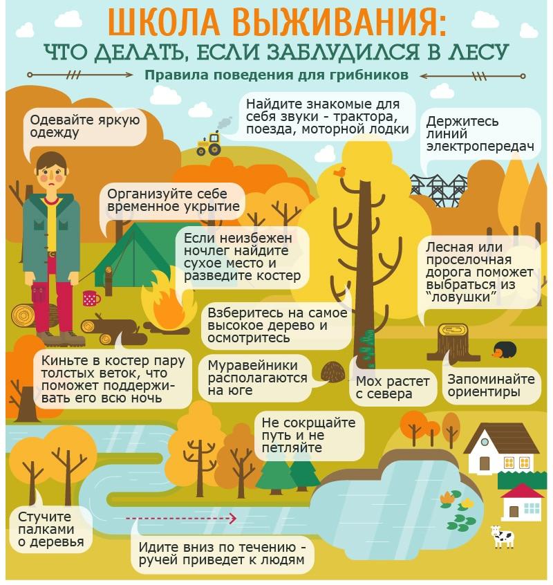 Спасатели напоминают правила поведения в лесу