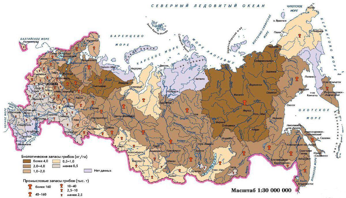 Грибная карта России