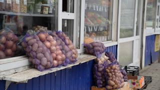 Каков урожай овощей в этом году