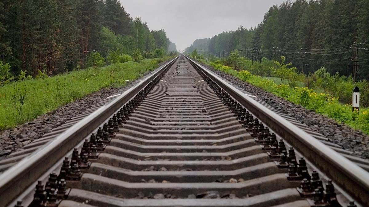 Грузовой поезд насмерть сбил череповчанку