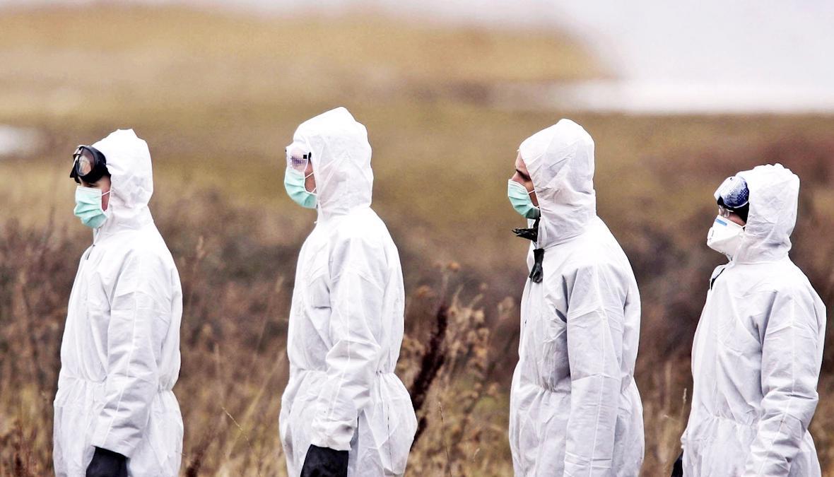 В Вологодской области за прошедшие сутки заболели коронавирусом 225 человек