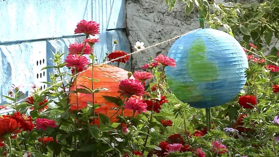 Меньше двух недель осталось до конца приема заявок на конкурс «Цветущий город» в Череповце