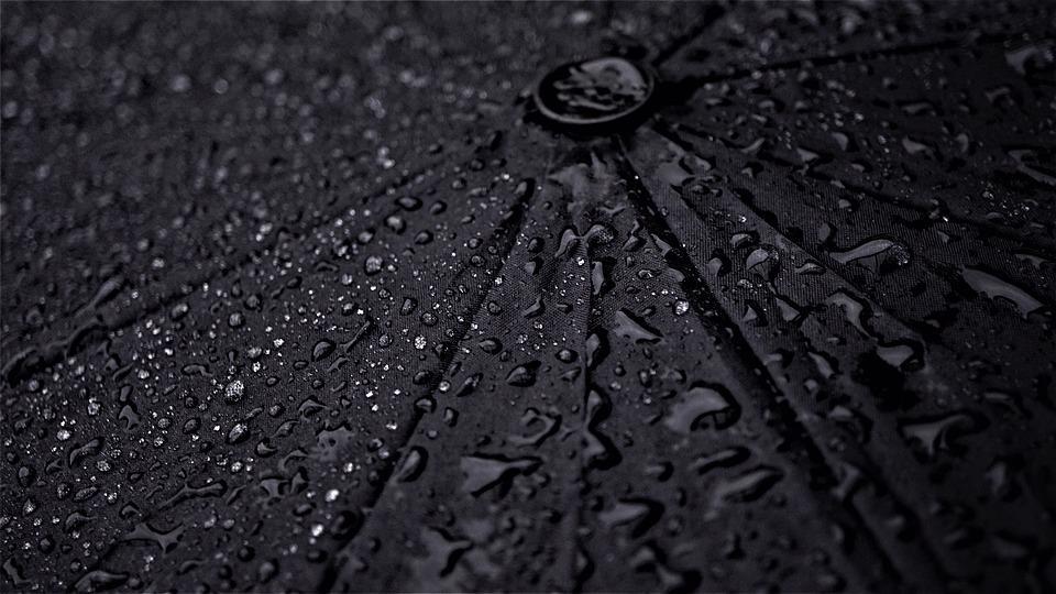 Дождливые выходные ожидают жителей Вологодчины