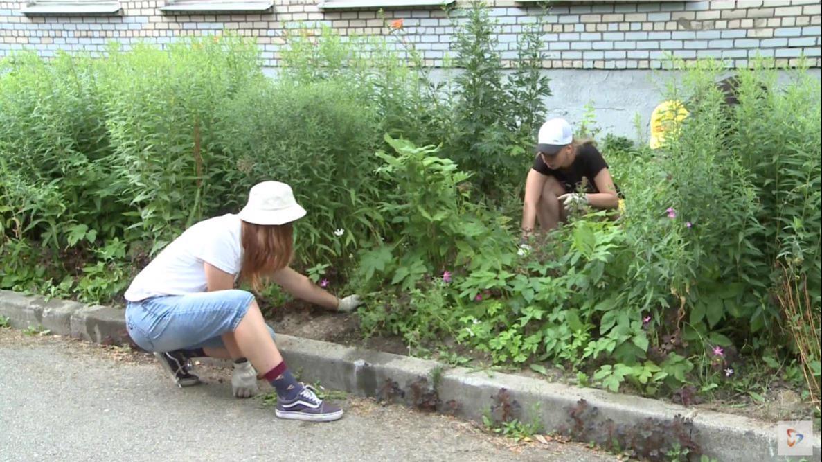 Рекордное число подростков устроилось этим летом на работу в Череповце