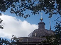 Фото: Церковь Илии Пророка. Поцкий Погост, Тарногский