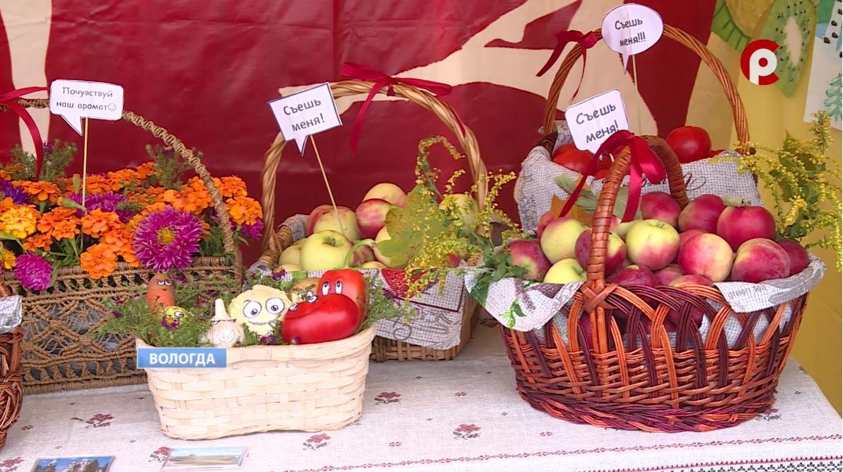 На ярмарку из дома конкурсанты взяли соленья, грибы, ягоды, мед, рыбу и многое другое