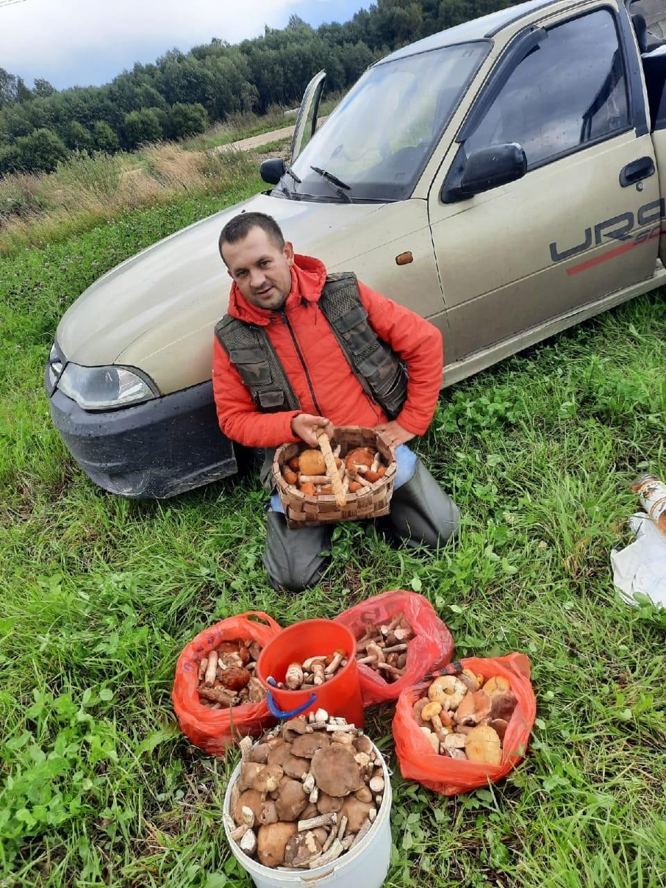 По словам Алексея Серманова, больше всего в череповецких лесах подберезовиков и подосиновиков.