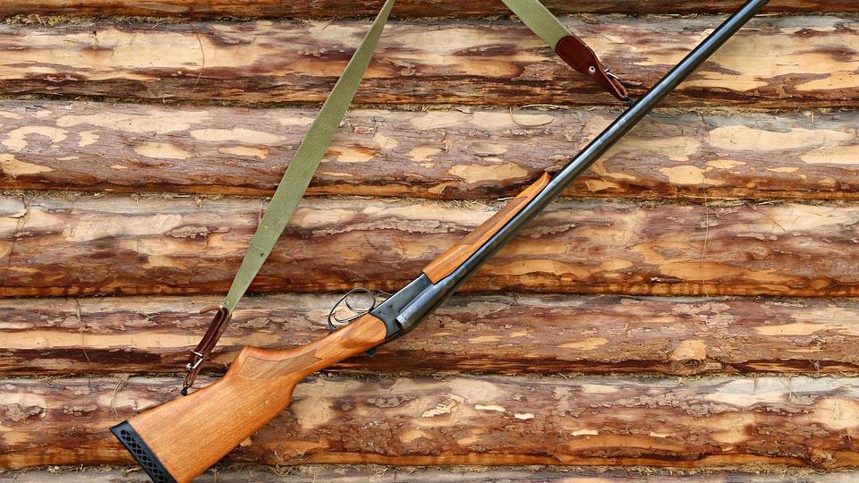 Сезон охоты на пушных животных открылся на Вологодчине