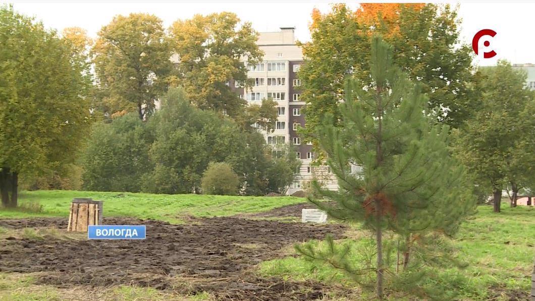 Детский городок необычной формы, амфитеатр и прогулочные зоны скоро появятся в Осановской роще в Вологде