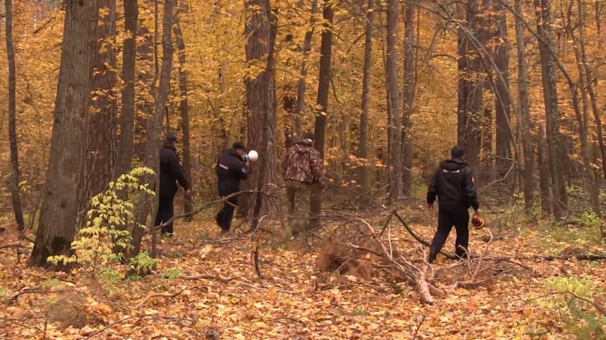 Мужчина, заблудившийся в лесу 11 дней назад, вернулся домой