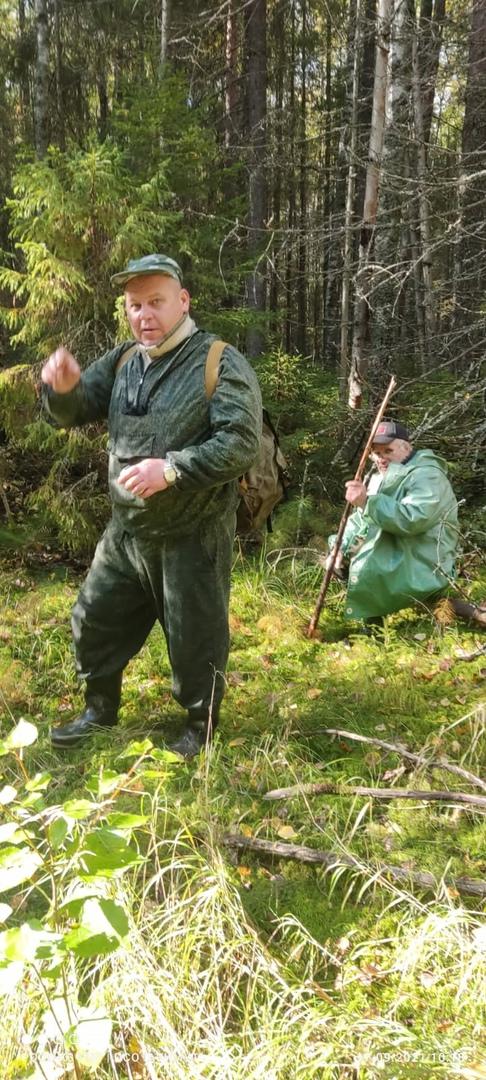 Волонтеры отряда работают в лесах по всей Вологодской области.