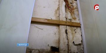 Весной на стене в квартире вологжанина появились сырые пятна