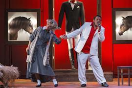 «Ищу мужа» - спектакль по современной пьесе хорвата Миро Гаврана