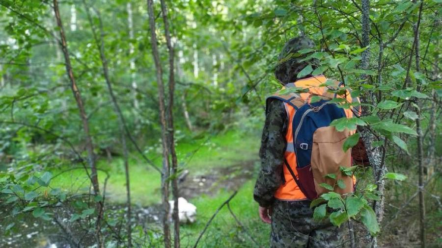 4 человека заблудились вчера в лесах Вологодской области