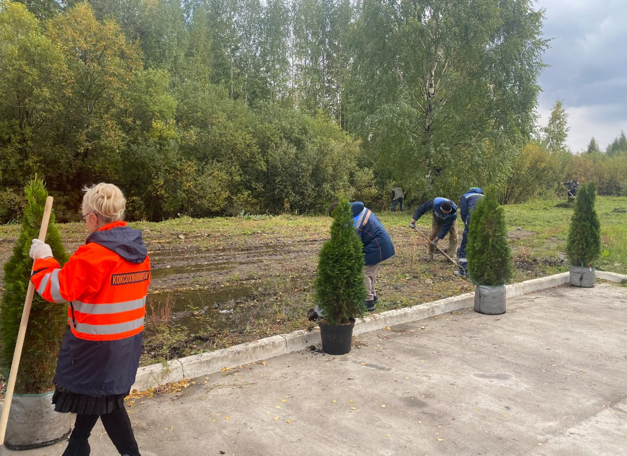 Сотрудники дирекции «КХМ-Череповец» произвели работы по созданию условий для повышения качества и комфорта городской среды.