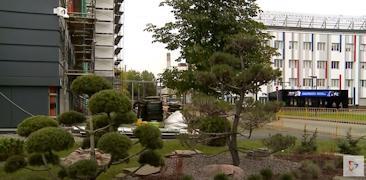 Сейчас у «Северстали» — рациональный подход к озеленению