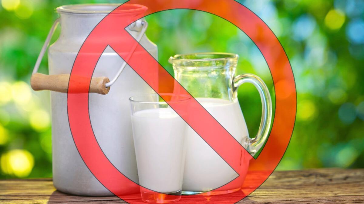 «Молочный скандал» в Карелии - поставки молока карельских совхозов направлены не на местные предприятия, а в Вологодскую область