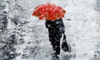 Дожди ипорывистый ветер ждут вологжан ввыходные