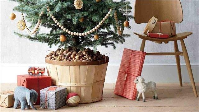 Какую елку подарить дачнику наНовый год?